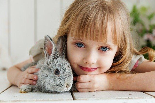 Dívka s králíkem